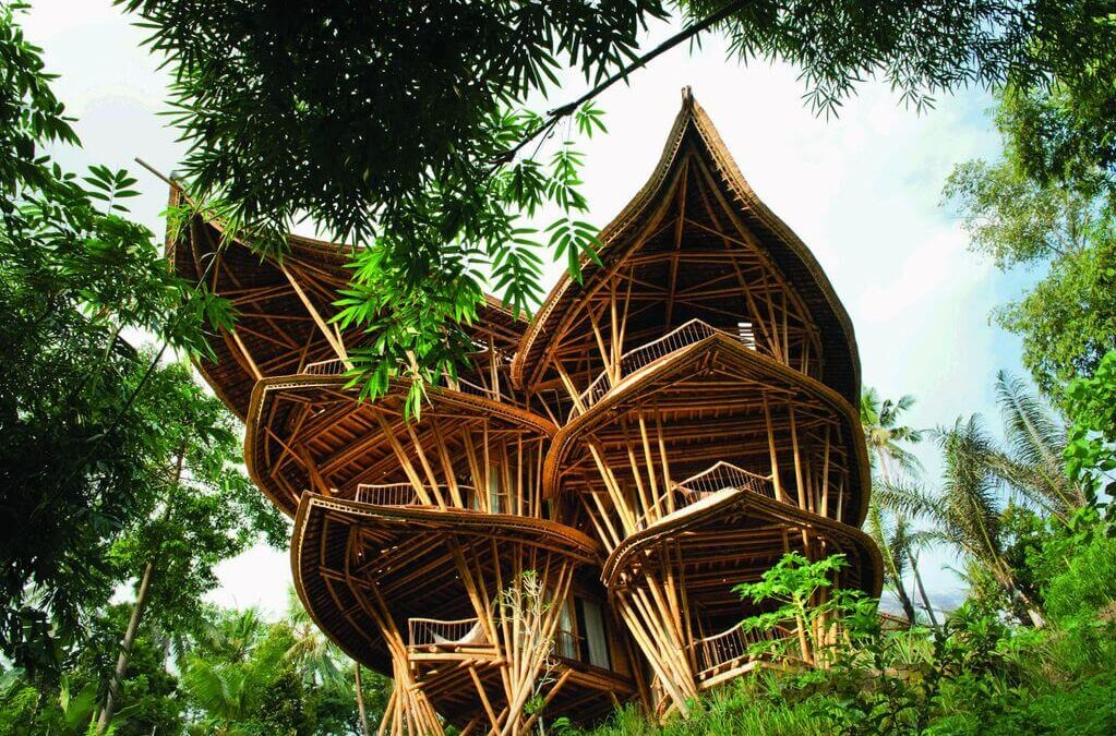 Why Bamboo House?: Design Ideas with 5+ Realistic Examples!